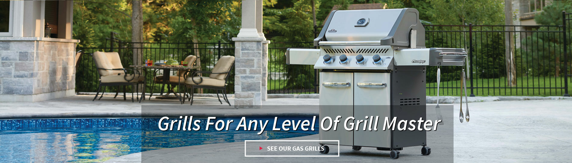Grills for any level of grillmaster