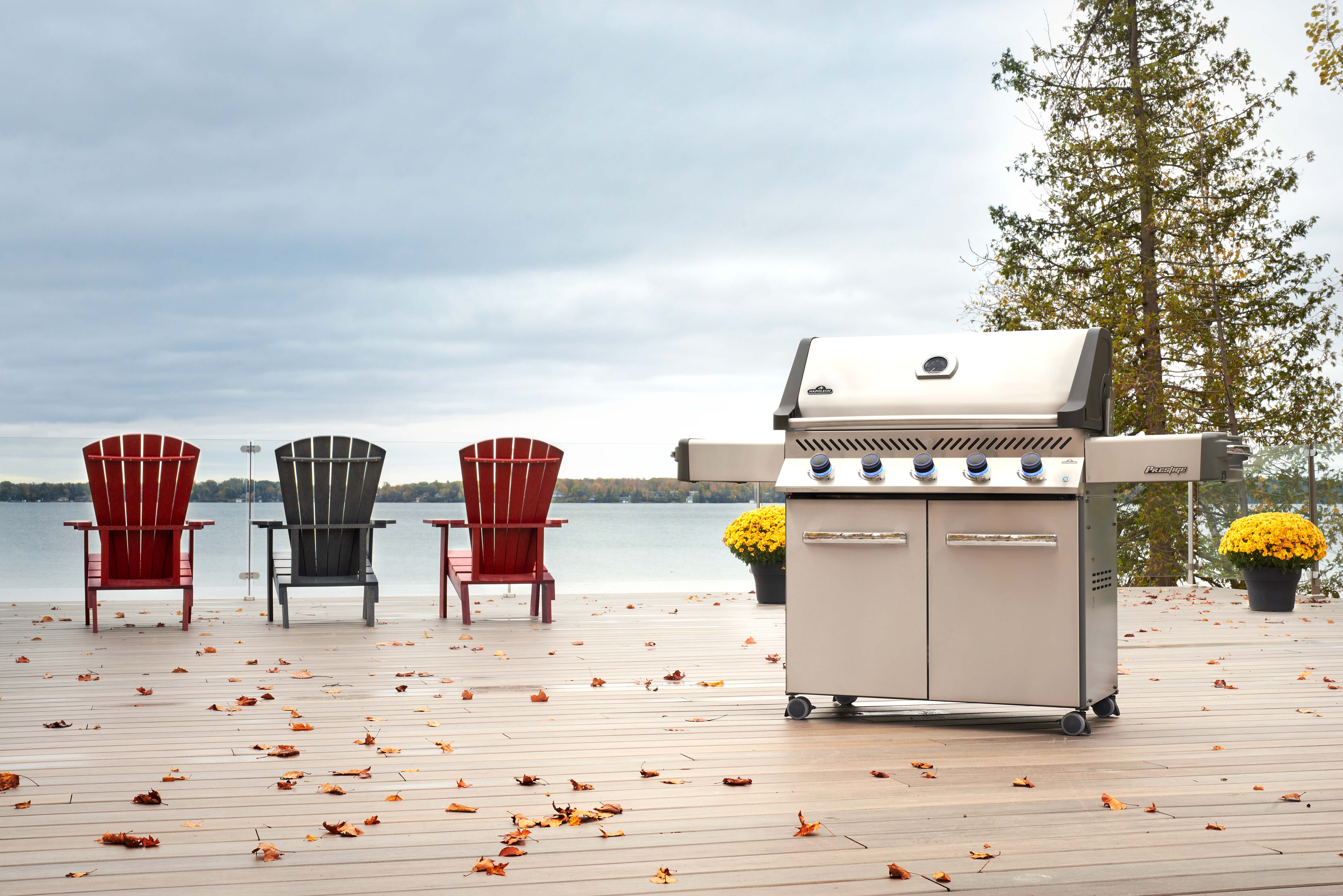 Prestige® 665 Natural Gas Grill, Stainless Steel